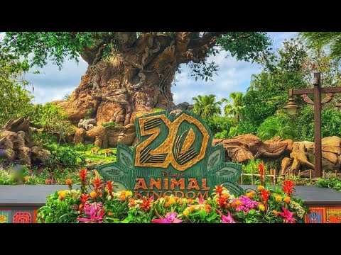 Disney's Animal Kingdom 20th Anniversary  Celebration!