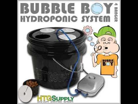 Bubble Boy Deep Water System - Grow Plants with Hydroponics! Simply and Easy!