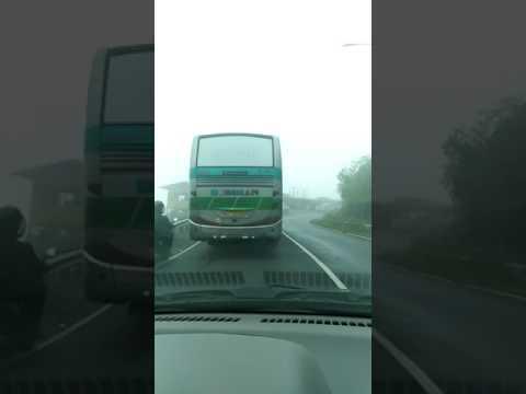 download lagu Viral  Bus Belok Ngeblong gratis