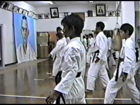 Isshin-Ryu World Karate Assn. HQ Okinawa, Japan 1994