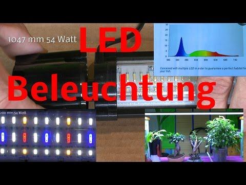 LED Zusatzbeleuchtung für Bonsai, Pflanzen und Aquarium