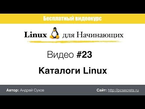 Видео #23. Каталоги Linux