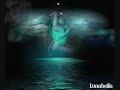 El Viento la Brisa y tu Recuerdo - Grupo Venus