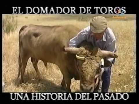 El Domador de Toros
