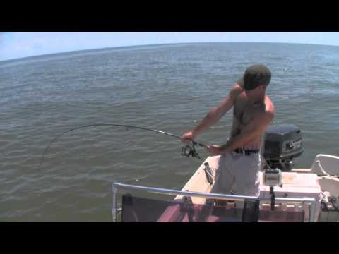 SHARK FISHING - Kent catches a BIG 9 Foot Sand Tiger