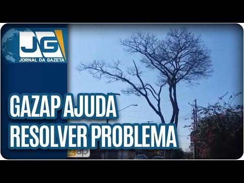 Telespectador agradece ajuda do Gazap