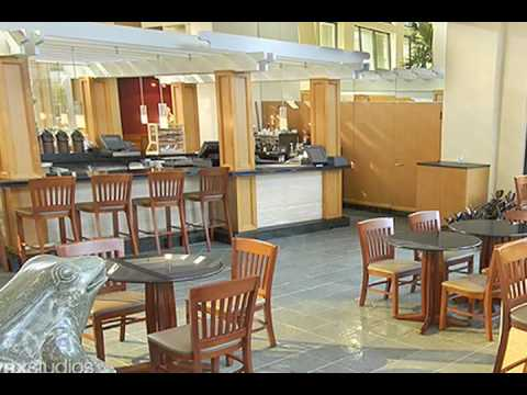 A Tour of The Hyatt Regency Grand Cypress pt 1