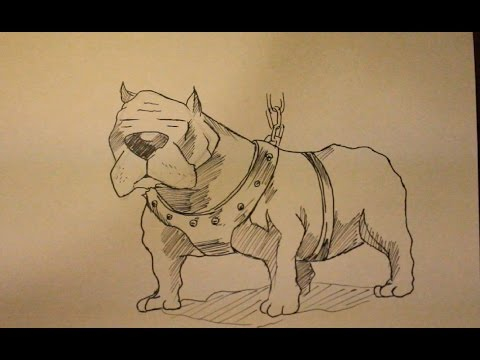 How To Draw Pitbull Dog|Step By Step|Face