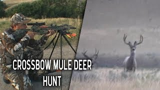 Crossbow Hunt for Giant Mule Deer in Wyoming | Throwback Thursday