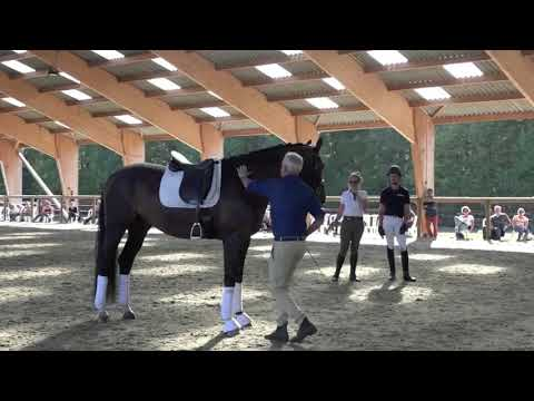change_video_youtube2('iGaADPXjK8k','Journée avec Andrew McLean au Haras de Hus');