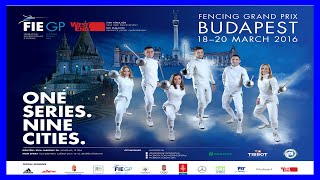 Гран-При Будапешта : Шотландия
