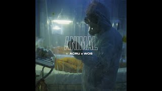 ACRU x WOS - ANIMAL (VIDEO OFICIAL)