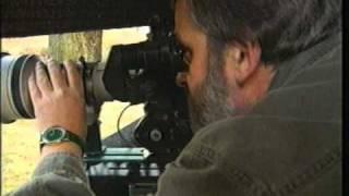 Tipps Eines Tierfilmers  Tips Of An Wild Animal Filmer