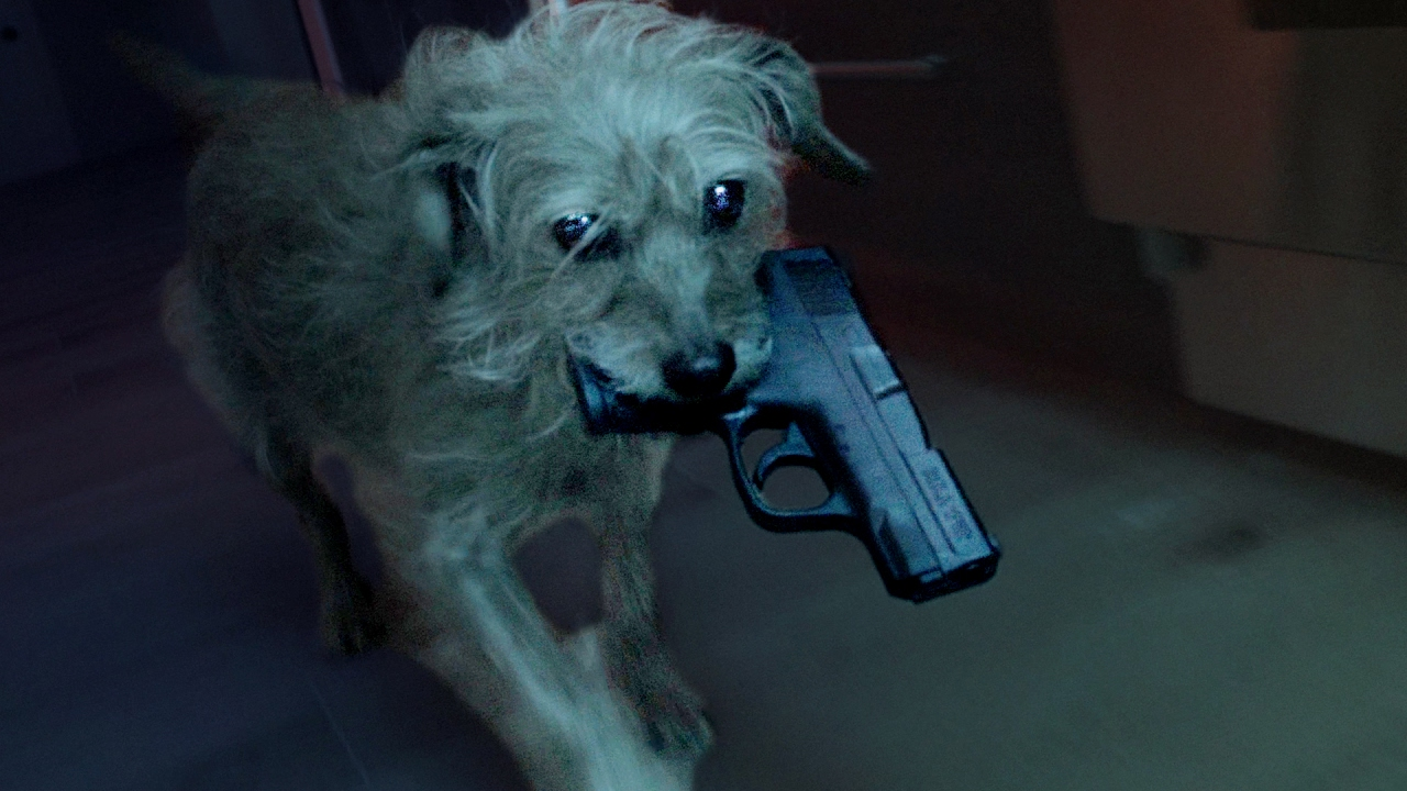 The Hilarious Trailer For Dog Wick, The Alternative Universe Of John Wick