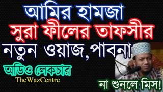 সুরা ফীলের তাফসীর। Amir Hamza New Waz। চমৎকার এই লেকচারটি শুনুন। Audio Waz