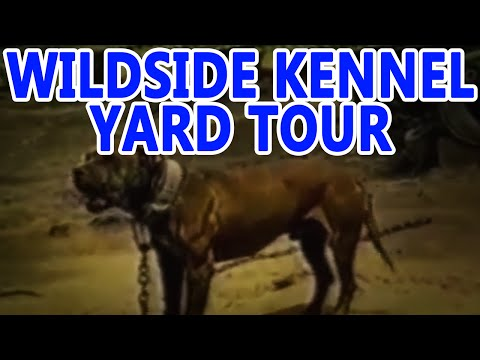 WILDSIDE kennels YARD TOUR 1999