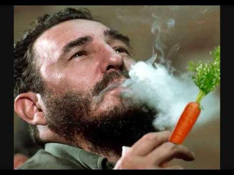 Havana Homegrown: Inside Cuba's Urban Agriculture Revolution