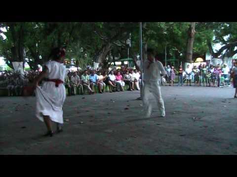El zopilote y la iguana