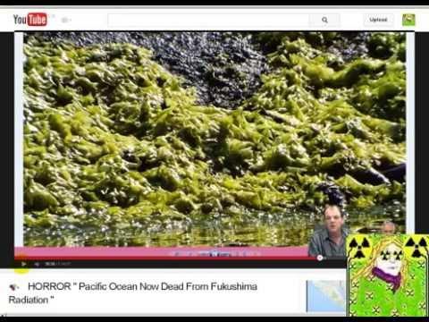Connectingdots2 Ebola Outbreak Liars & Money vs Silver + Fukushima Liar BeautifulgirlbyDana