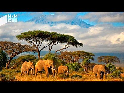 Madrileños por el mundo: Tanzania, un país que anima a la aventura