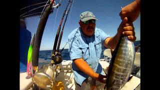 Offshore Slam Video Tuna Wahoo Dolphin