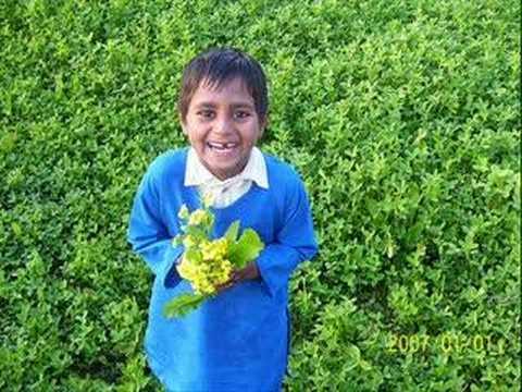 Basheera Choki Bhagat.پُھل ودی کھونی آں Video