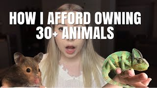 HOW DO I AFFORD OWNING SO MANY ANIMALS?