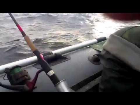 лодка пластиковая нельма 370