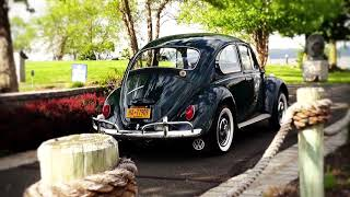 Classic VW BuGs 1967 Volkswagen Beetle Sedan Restoration by Chris Vallone