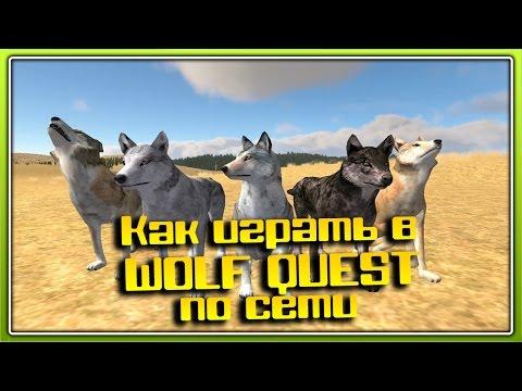 Как играть в WolfQuest по сети