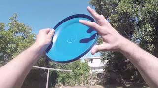 Retrieving a Frisbee