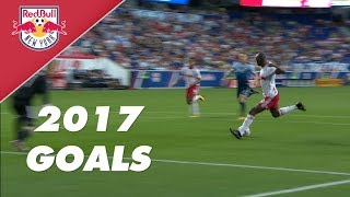 Every Single Goal of 2017!