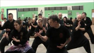 Seminar With Pandeka Mihar Hand Techniques & Footwork/ Langkah. Turin Italy 2013