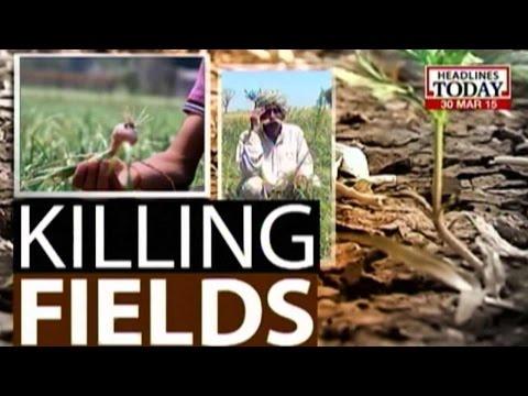 Killing Fields: Unseasonable Rain, Hailstorm Inflict Huge Crop Damage In Haryana