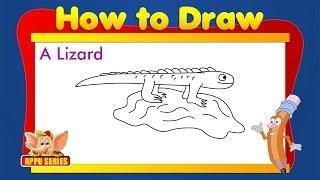 Learn to Draw Animals - Lizard