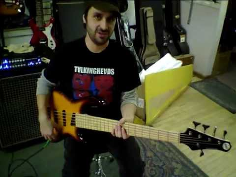 Michael Tobias Kingston Saratoga 5 string bass teast and overview.