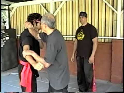 Indonesian Martial Arts.Pencak-Silat training 5 Image 1