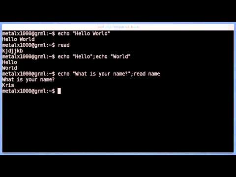 Shell Basics - echo and read - Linux Tutorial #1