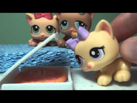 Littlest Pet Shop: LPSlover 4,000 Subscribers DELETED SCENES & BLOOPERS