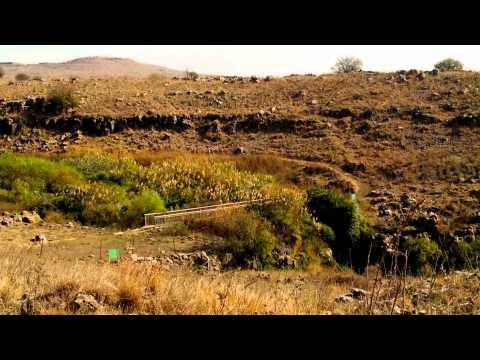 Golan heights - Gamla Nature Reserve ISRAEL November 2013