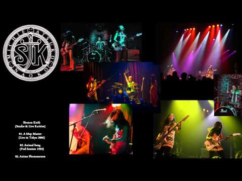 Shonen Knife - Studio & Live Rarities (71+2 songs - Slideshow)(DHV 2011)