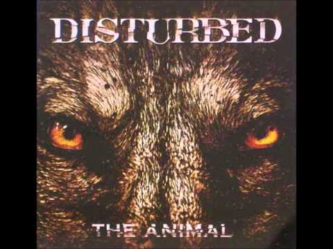 my vocal cover of The Animal by disturbed. All song credit goes to disturbed copyright to asylum album 2010 and The Animal single 2011 Vocals credit to me. Copyright Disclaimer Under Section...