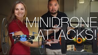 Parrot MiniDrones Rolling Spider and Jumping Sumo Hands-On