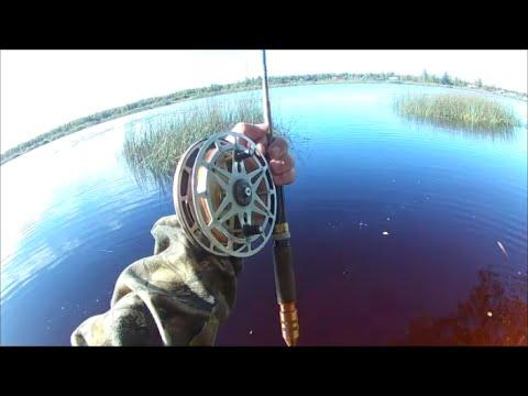 ловля рыбы в усть-луге