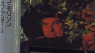 Watch Van Morrison A Sense Of Wonder video