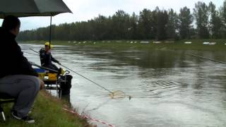 61st Coarse Angling World Championship - Walton Phillip - Ireland