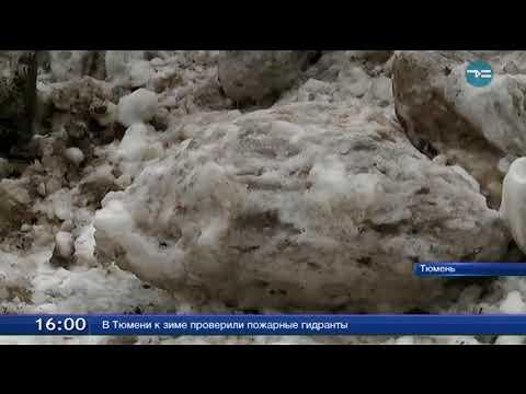 Незаконная свалка снега на окраине Тюмени