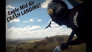 Huge Eagle Attacks Hang Glider!! Crash Landing