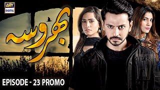 Bharosa Episode 23 Promo - ARY Digital Drama