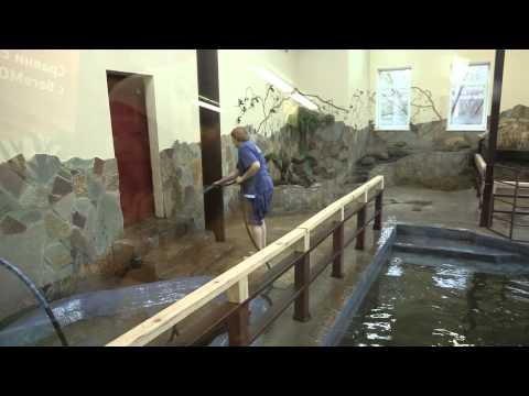 Как работает зоопарк
